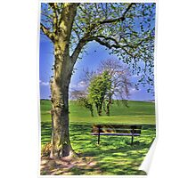 In the Dappled Shade Poster