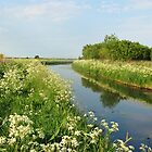 River Aa in May by ienemien