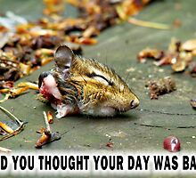 And you thought YOUR day was bad?  by Marcia Rubin