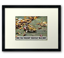 And you thought YOUR day was bad?  Framed Print