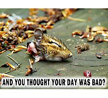 And you thought YOUR day was bad?  Photographic Print