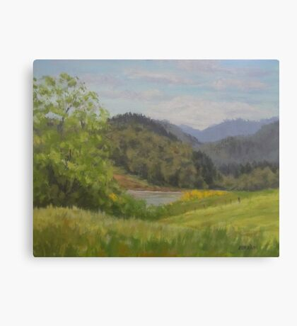 Ford's Pond in Spring Canvas Print