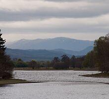 Loch Insh by Rupert Connor