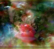 MYSTERIOUS GARDEN...PLEASE VIEW LARGER by Sherri     Nicholas