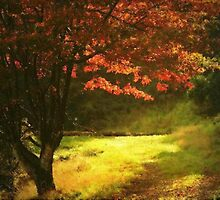 PAINTED AUTUMN MAPLE TREE by RoseMarie747