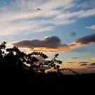 Scottish Sunset by Michael Neal