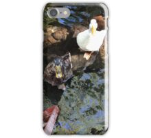 Ducks iPhone Case/Skin