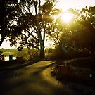 Mannum, South Australia by Andre Gascoigne