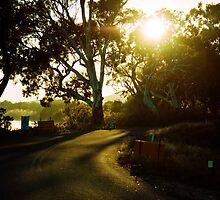 Mannum, South Australia by Andre Gascoigne