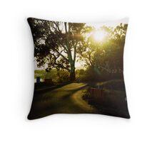 Mannum, South Australia Throw Pillow