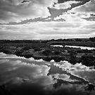 Maidment Lagoon near Bowhill by Andre Gascoigne