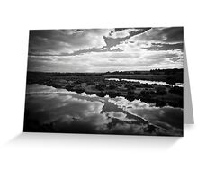 Maidment Lagoon near Bowhill Greeting Card