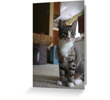 Zoe(: Greeting Card