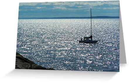 On The Water by Mike  MacNeil