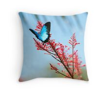 The beautiful Ulysses butterfly Throw Pillow