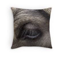 Love my lashes? Throw Pillow