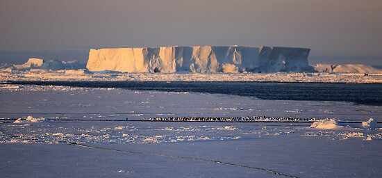 Antarctica by Doug Thost