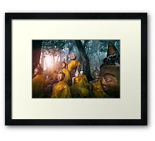 Valley of the Buddhas  Framed Print
