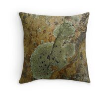 Lichen in the Clean Air of the Forest Throw Pillow