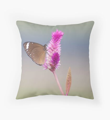 Happy Days - common eggfly butterfly Throw Pillow