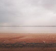 Salt Lake Rain by Peter Hodgson
