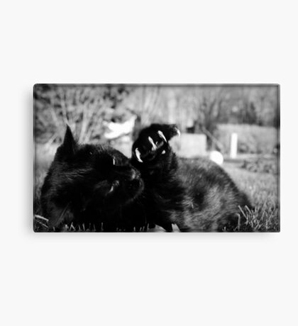 Little Panther Canvas Print
