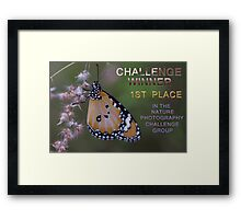 Banner Nature Photography Challenge Group Framed Print