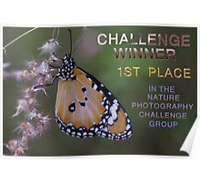 Banner Nature Photography Challenge Group Poster