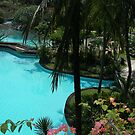 Aptly named - Laguna Hotel, Nusa Dua, Bali by chijude