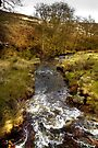 Rushing Water, North Yorkshire Moors by Christine Smith