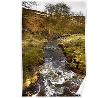Rushing Water, North Yorkshire Moors Poster