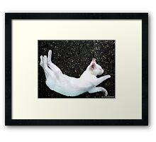 CONTORSIONIST  Framed Print