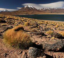Lagoon and Volcanoes Atacama Desert - Chile by David Pillinger