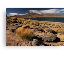Lagoon and Volcanoes Atacama Desert - Chile Canvas Print