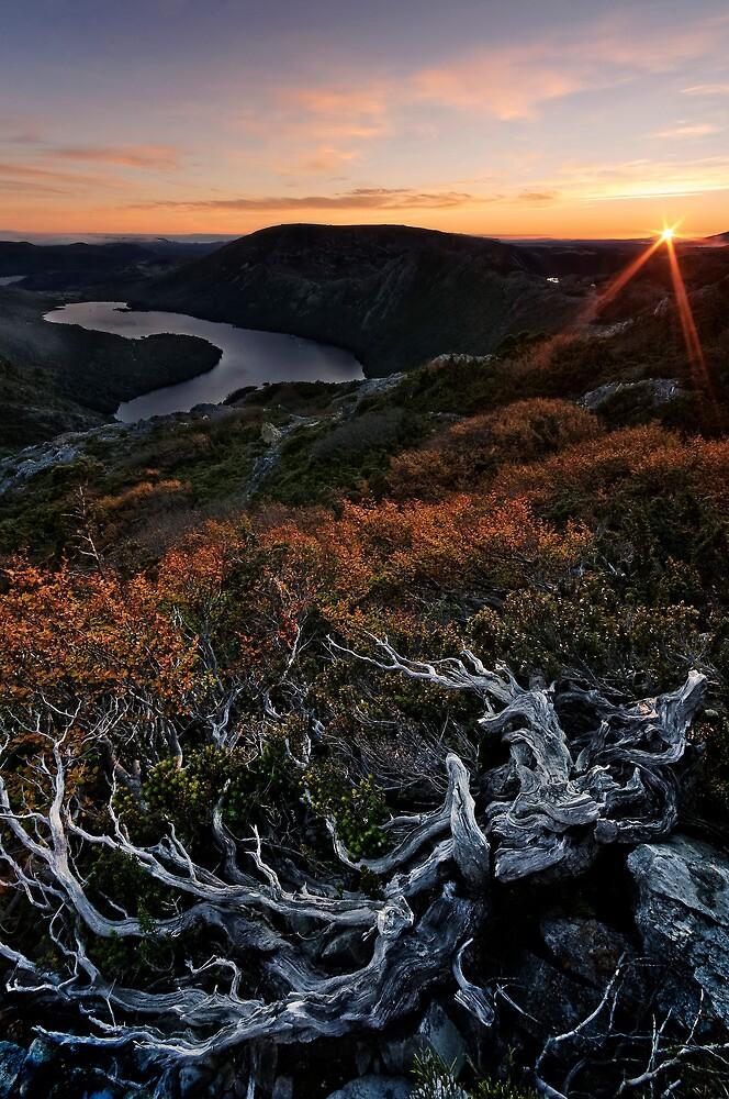 Cradle Dawn Vista by Robert Mullner