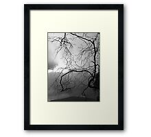 It Is Our Nature Framed Print