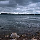 Rutland Water 2 by Mike Topley