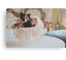 Siblings Love Canvas Print