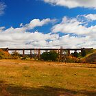 Taradale Railway Viaduct by Dave Callaway