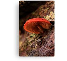 red gills Canvas Print