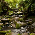Erskine Falls by Chris Sanchez