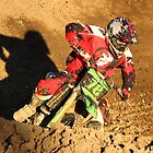 railing a berm by stephen walters