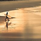 The stride by Paul Grinzi