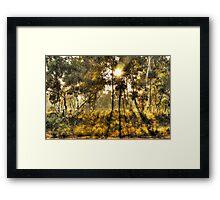 Dawn Light, Hill End Framed Print