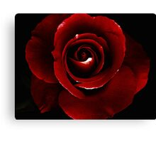 Blood Red.. Canvas Print