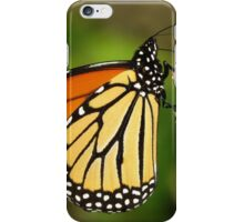 Monarch on Sedum iPhone Case/Skin