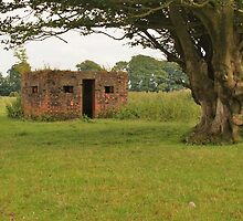 RAF Pillbox At Culmhead Airfield by sgtgrech
