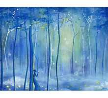 Fairy Fantasy Forest Photographic Print