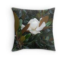 A SOUTHERN MAGNOLIA TREE Throw Pillow