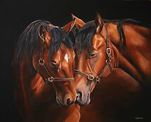 Horse Whisperers by Stephanie Greaves